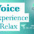 Voice Experience
